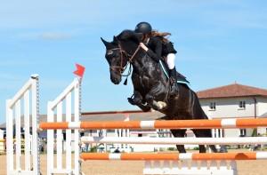 Frau springt mit Pferd über Hindernis